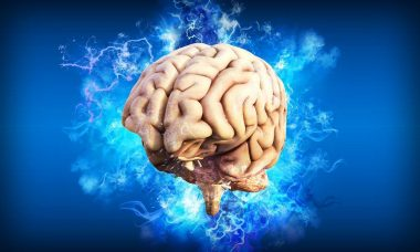 brain-4314636_1280.jpg